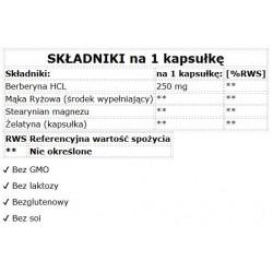 21st Century, Niacinamide, 500 mg, 110 tabletek
